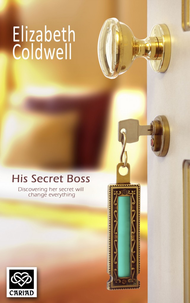 Liz ColdwellHis Secret Boss6