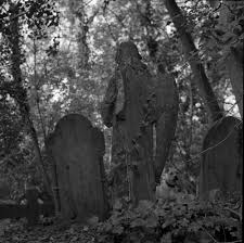 Graveyard angel 1