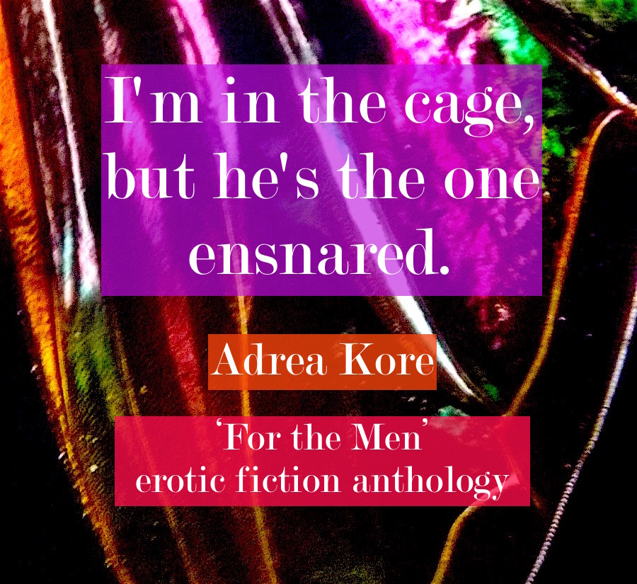 adrea-kore-for-the-men-quote-erotic-fiction