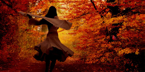 autumn-picture-660x330